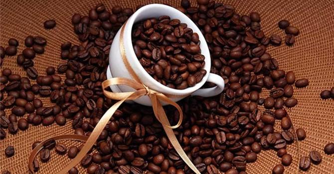 Cà phê Arabica: Chập chững thị trường trong nước