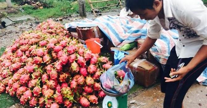 Vỉa hè Hà Nội ngập thanh long 10.000 đồng/kg