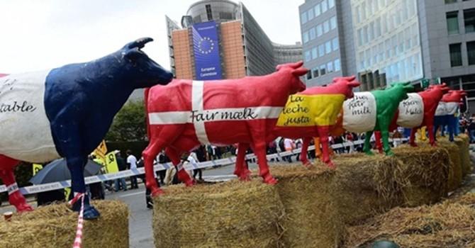 Sữa ở châu Âu rẻ hơn nước lọc