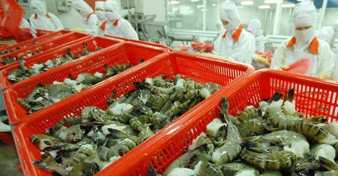 Ngành thủy sản: Khó khăn là thời cơ cho M&A?