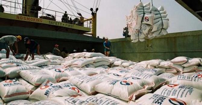 Chuyên gia Thái: Gạo Việt đi sau Thái Lan 100 năm