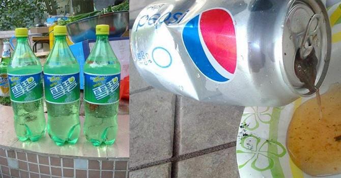 """Những vụ """"ruồi trong chai"""" nước ngọt nổi tiếng thế giới"""