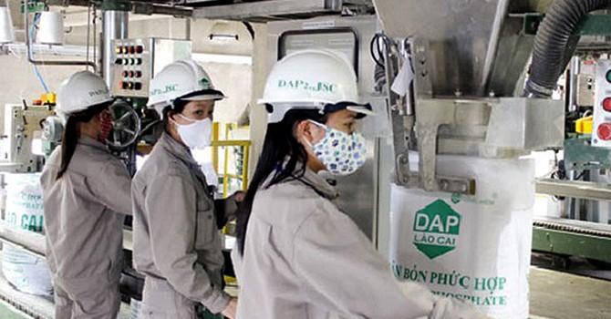 Tăng thuế nhập khẩu phân bón DAP: Bất lợi cho doanh nghiệp nhỏ và siêu nhỏ