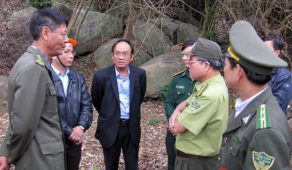 Tạm đình chỉ Hạt trưởng, Hạt phó Kiểm lâm vụ phá rừng Sơn Trà
