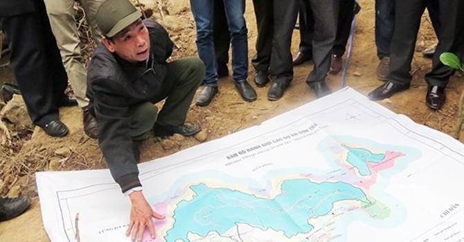 Đà Nẵng: Cách chức Hạt trưởng, Hạt phó kiểm lâm vụ phá rừng Sơn Trà