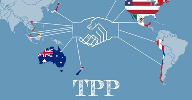 """Nhiều doanh nghiệp nghĩ TPP như """"chiếc đũa thần"""""""