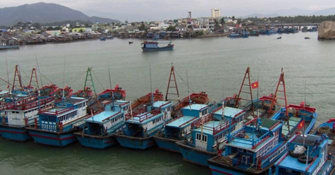 Tàu mang cờ Trung Quốc lại tấn công tàu cá của ngư dân Quảng Nam