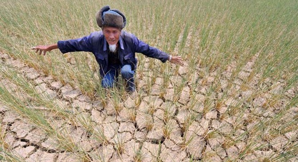"""Hạn hán và thiên tai đang được Trung Quốc """"xuất khẩu"""" như thế nào?"""