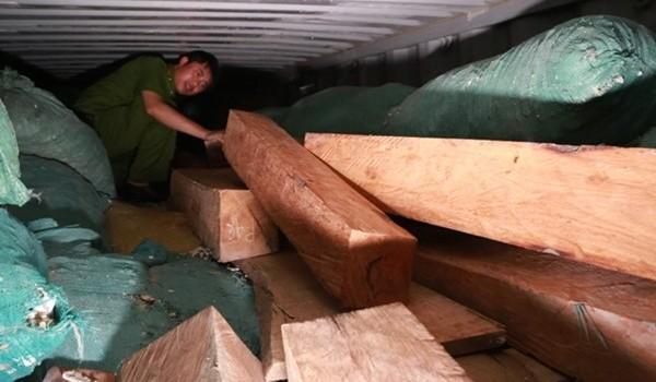 Bắt 170 lóng gỗ quý hiếm trên xe Container chở sắn