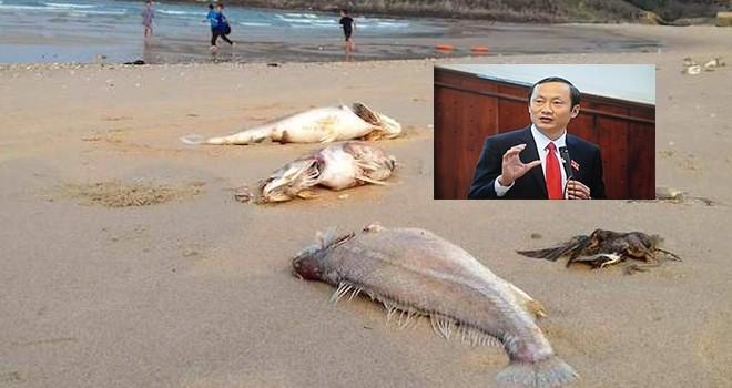 """Dân mời Phó Chủ tịch Hà Tĩnh """"xơi"""" cá, tắm biển Vũng Áng"""