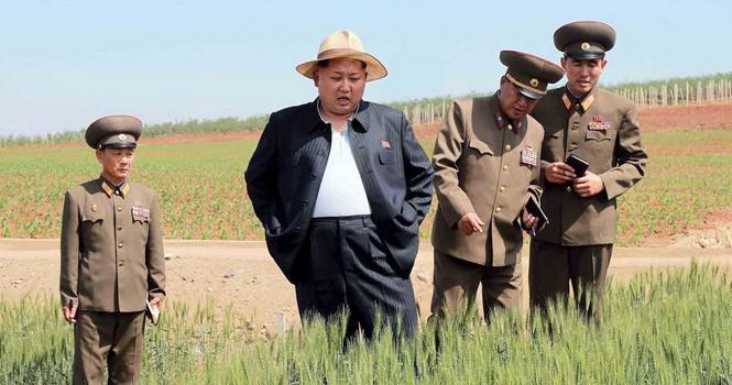 Nước suối bán ở Triều Tiên là thuốc trường sinh bất lão?