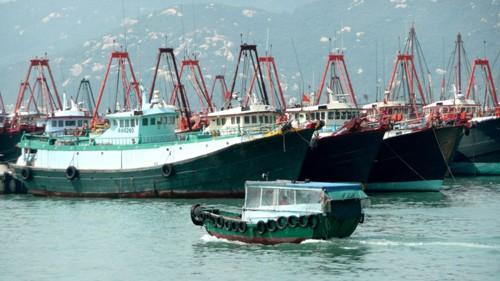 Xây cảng cá khổng lồ, Trung Quốc muốn thò tay xa hơn xuống Biển Đông