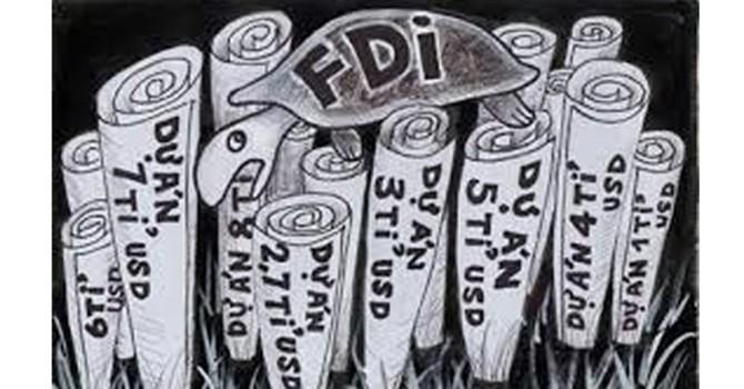 Chạy theo ưu đãi quy mô, một nửa số vốn FDI là vốn ảo