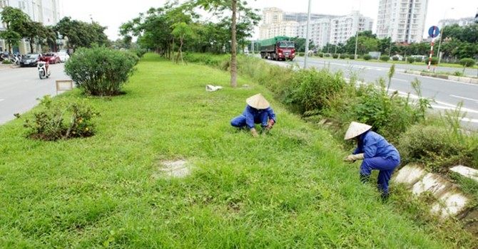 """Cắt cỏ hết 700 tỷ: Hà Nội """"đã phanh phui ra thì nên điều tra cho tới nơi tới chốn"""""""