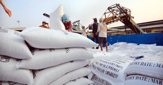 Bỏ Quy hoạch thương nhân kinh doanh xuất khẩu gạo: Vẫn chưa đủ