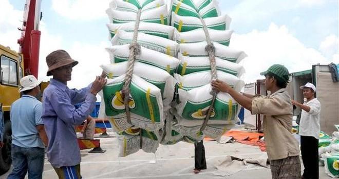 """""""Giải phóng"""" hạt gạo: Đã cởi trói vẫn còn vướng hàng rào"""