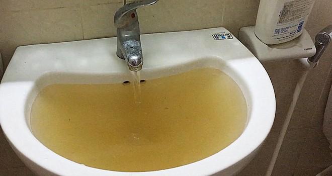 Nước sạch màu đen, ký sinh trùng lổm ngổm ở khu đô thị Hà Nội