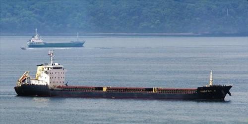 4 tàu vi phạm lệnh trừng phạt Triều Tiên bị cấm cập cảng khắp thế giới
