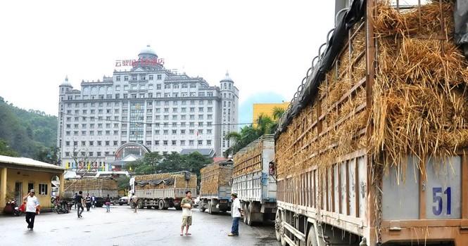 Trung Quốc dựng rào cản nông sản Việt