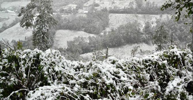 Nhiệt độ toàn miền Bắc giảm sâu, Hà Nội lạnh 6 độ C