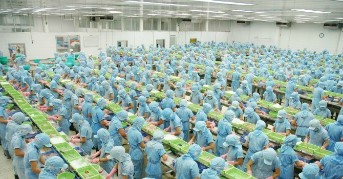 Mỹ công bố chính thức 45 doanh nghiệp cá tra Việt đủ điều kiện xuất khẩu