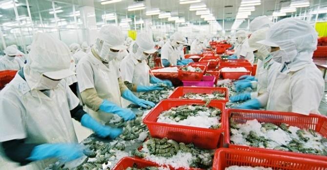Việt Nam vượt Thái Lan đứng thứ 1 thế giới về xuất khẩu tôm