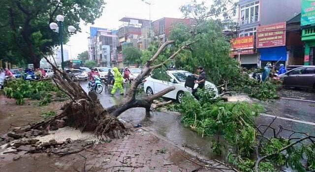 Hà Nội: Thiệt hại gần 200 tỷ đồng sau cơn bão số 1