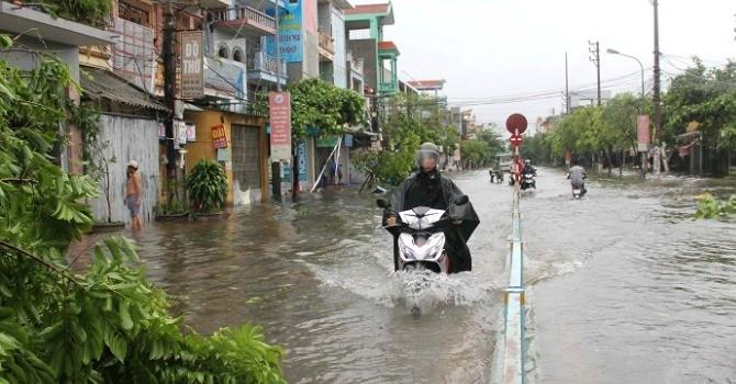 Thái Bình: Mưa lớn khiến 2 người bị thương, hàng chục nghìn diện tích lúa mất trắng