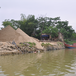 Chỉ đạo nổi bật: Việt Nam không xuất khẩu mội loại cát ra nước ngoài