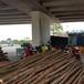 Nhà hàng mọc dưới gầm cầu cao tốc Hà Nội - Hải Phòng