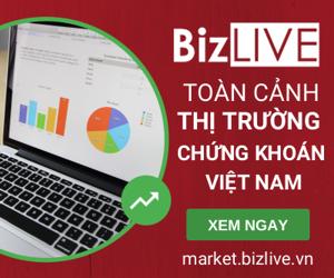 Thống kê toàn cảnh thị trường chứng khoán Việt Nam - market.BizLIVE.vn